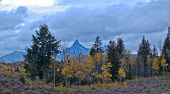 foto of beartooth  - Blue mountains and an overcast sky dominate this image taken in the Beartooth Mountains of northwest Wyoming. Pilot Peak rises in the background while golden Aspens and evergreens highlight the foreground. ** Note: Slight blurriness, best at smaller size - JPG