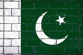 National Flag Of  Pakistan Against A Background Of A Stone Background Covered With Moss poster
