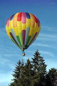 Постер, плакат: Воздушный шар над деревья