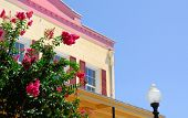 pic of crepe myrtle  - Historic building by pretty flowering bushes - JPG