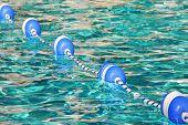 image of floaties  - buoys acting as boundary in pretty pool water - JPG