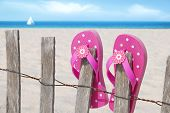 Pretty pink flip flops on beach fence with sailboat in distance