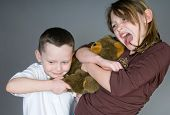 stock photo of yanks  - Young boy and girl fighting over toy bear - JPG