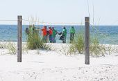 PERDIDO KEY, FL - JUNE 9: BP oil spill workers clean the beaches on June 9, 2010 as oil threatens th