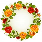 picture of yellow rose  - Vector red and yellow rose frame in the shape of circle - JPG
