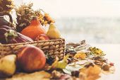 Hello Autumn. Pumpkin And Vegetables In Basket And Colorful Leaves With Acorns And Nuts On Wooden Ta poster