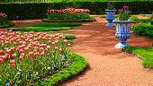 picture of garden eden  - Scenic garden in spring - JPG