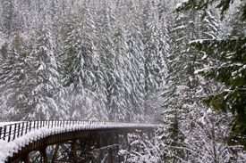 stock photo of trussle  - Northern Pacific Rail Bridge near Steven - JPG