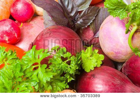 color Fresh beautiful vegetables. yield