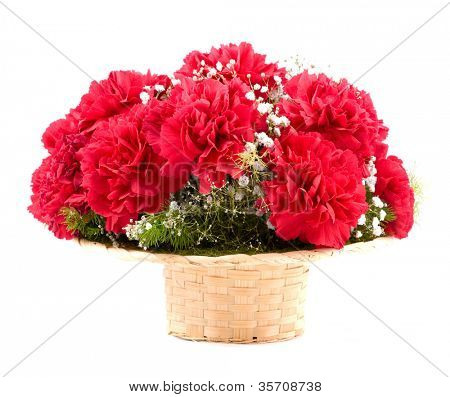 Beautiful red flowers of carnations