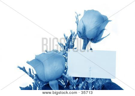 Roses With Gift Card  In Blue Tones