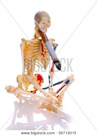 Cigarette and skeleton. Isolation on the white