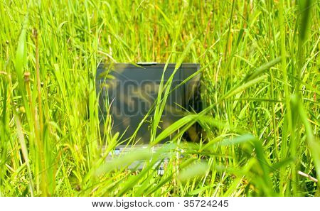 laptop in grass as a symbol for fieldwork