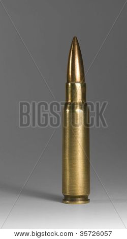 Upright Metallic Ammunition In Grey Back