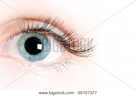 macro beautiful female eye