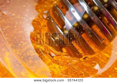 fresh gold honey dipper. macro