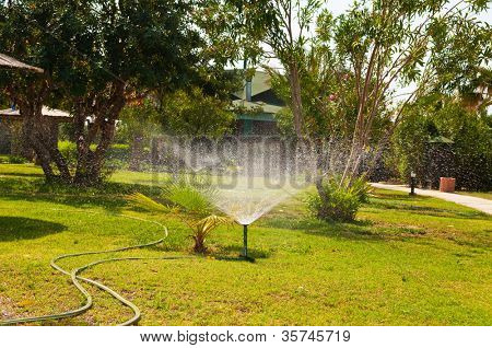 Garden sprinkler on a sunny summer day during watering the green lawn in garden