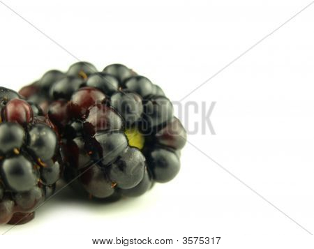 Blackberry Very Close