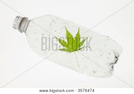 Recyclable Water Bottle
