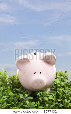 Piggy bank over blue sky
