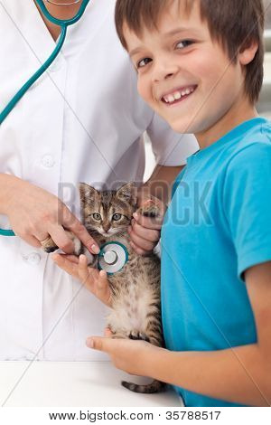 Veterinary care concept with young boy and his cat at the doctor