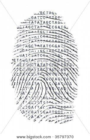 Genetic Latter Finger Print Isolated on White