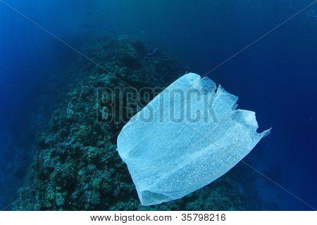 Environmental Pollution Problem - plastic bag on ocean coral reef