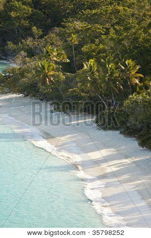 trunk bay, us virgin islands, with no people, vertical shot
