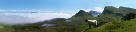 picture of marlboro  - Quirang panorama on the Isle of Skye with a lamb in the foreground