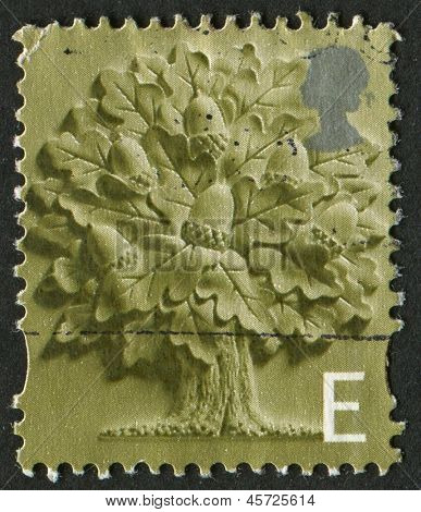 UK - CIRCA 2001: A stamp printed in UK shows image of the Oak Tree, circa 2001.