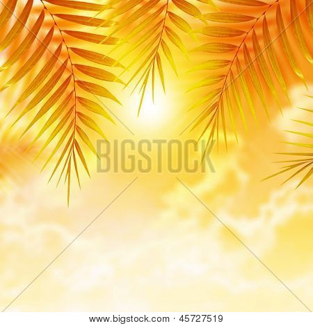 Beautiful palm leaves on orange sunset background, luxury tropical resort, day spa, beach on the island, holiday and vacation concept