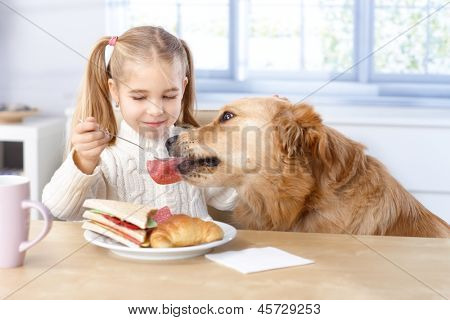 Little girl feeding dog from her own plate by fork, smiling.