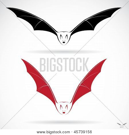 Vector image of an bat