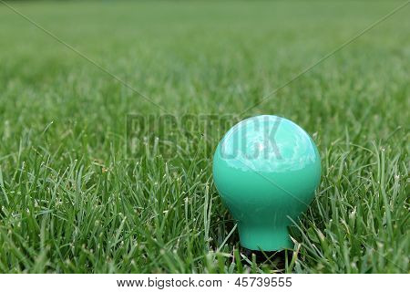 Green Light Bulb In Grass