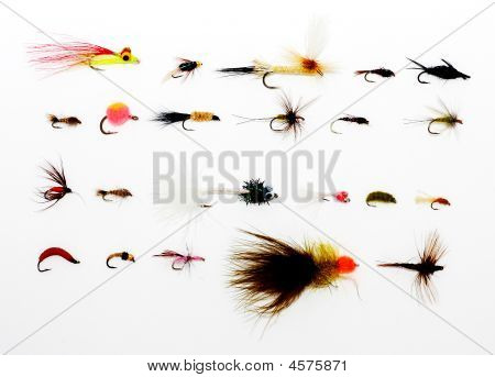 Assorted Flies For Fishing