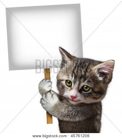 Cat Holding Sign