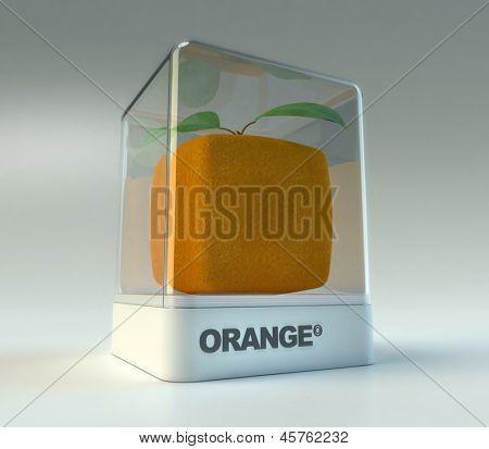 A cubic orange in a showcase