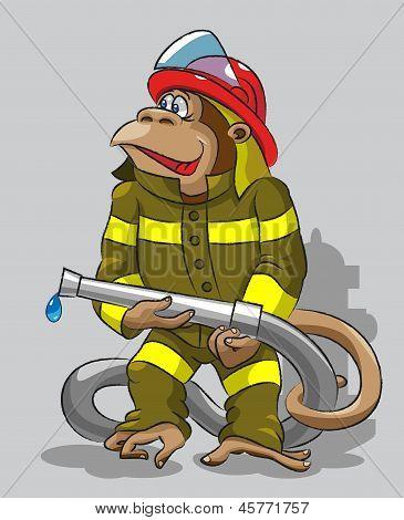 Monkey -  Fireman