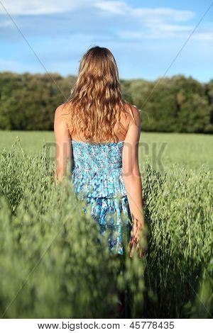 Back View Of A Woman Walking Across An Oat Meadow