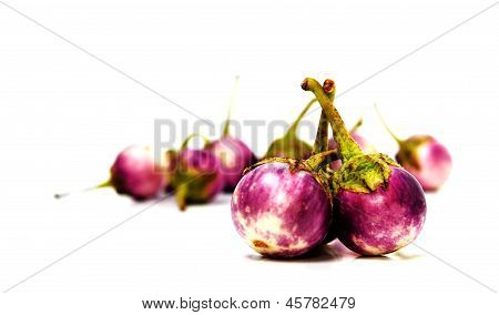 Group Of Small Egg-plants. Aubergine.
