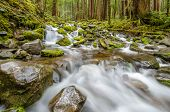 foto of olympic mountains  - Beautiful Mountain River at the Olympics Park - JPG