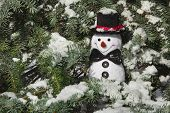 pic of conifers  - Happy Christmas snowman sitting in a snowy winter conifer fir tree - JPG