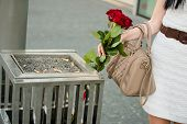 stock photo of throw up  - Young woman throws away red roses to litter bin - JPG