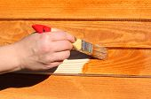 stock photo of wood craft  - hand with paintbrush on wood - JPG