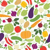 picture of marrow  - seamless pattern on a white background  - JPG