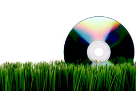 pic of fescue  - Compact computer data disk on green grass with a white background - JPG