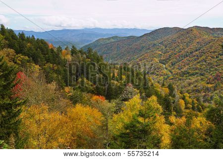 Vibrant Fall Colors at Newfound Gap