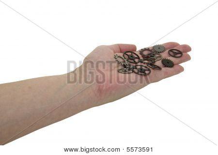 Offering Gears