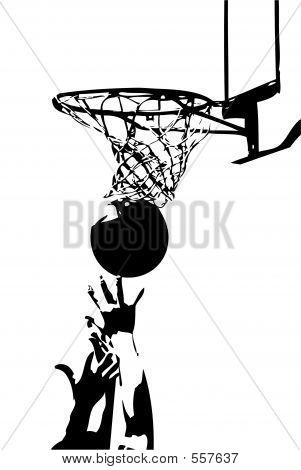 Sport Spirit - Will For Success
