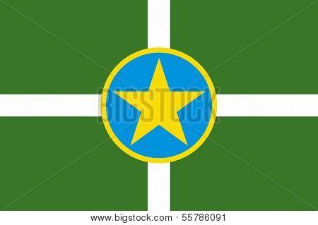 Jackson City Flag